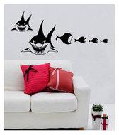 muursticker coart shark